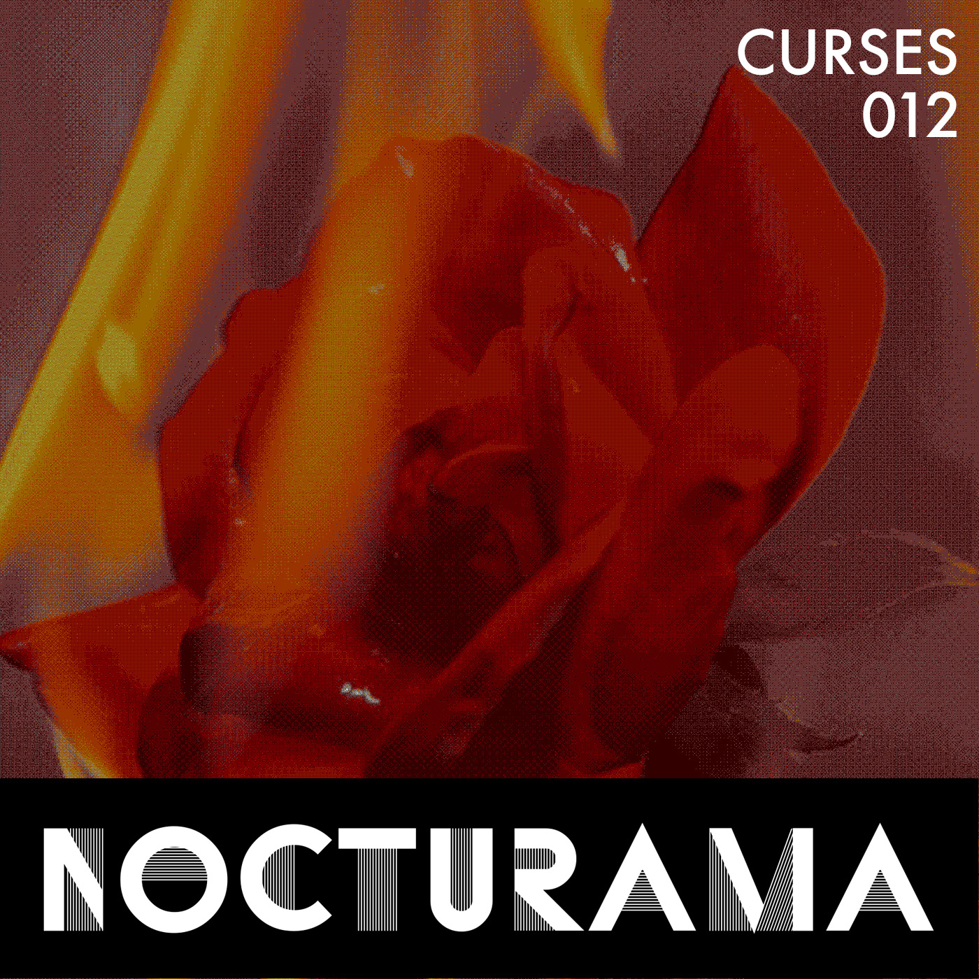 http://geist-agency.com/news-description/Nocturama012-Curses